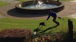 Petugas Kansas City Zoo berusaha mengejar primata yang kabur dari kandang (photocourtesy bbc.co.uk)