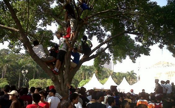 Warga Jakarta memilih untuk piknik di atas pohon, menghindari penuhnya taman-taman kota. (photo courtesy of Tribunnews.com)